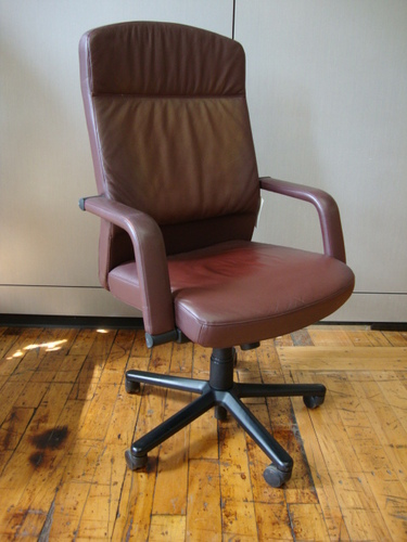 Vecta Leather Desk Chairs